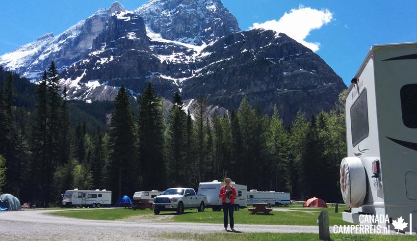 Camping Kicking Horse Field