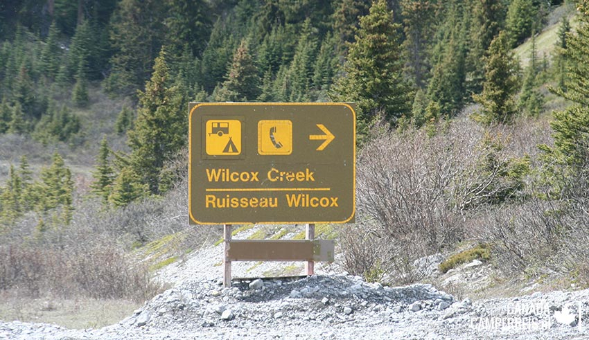 Camping Wilcox Creek